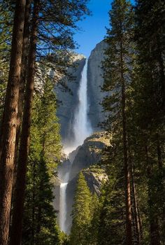 Yosemite National Park- Pictures just can't capture it. It is amazing