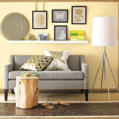 stump, couch, colors, pictures