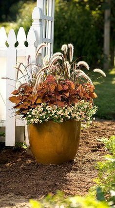 Autumn flowers in a terra cotta planter that sits proudly against a white gingham fence.  It makes Autumn a wonderful time of the year