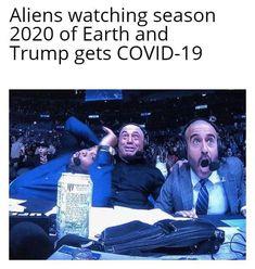 Really Funny Memes, Stupid Funny Memes, Funny Relatable Memes, Funny Posts, Funny Shit, Funny Stuff, Funny Things, Random Stuff, Funny Cute