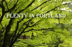 Discover all the beauty of #Portland #Oregon's parks, gardens, waterfalls, beaches, and more in this guide!
