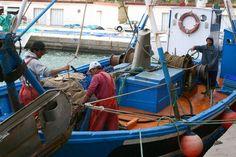 Abierta la convocatoria de ayudas del Fondo Europeo Marítimo y de Pesca por un importe de 180.000 euros