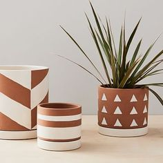 Make a home for your succulents and air plants in our hand-glazed earthenware Rio Cache Pots. Finished with white geometric patterns that pop against a natural backdrop, these pots are simple yet still catch the eye both indoors and out. Painted Plant Pots, Painted Flower Pots, Terracotta Plant Pots, Painting Terracotta Pots, Painted Pebbles, Clay Flower Pots, Ceramic Flower Pots, Decorative Clay Pots, Flower Pot Art