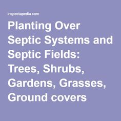 planting over septic systems and septic fields trees shrubs gardens grasses