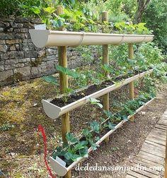 Comment faire pousser des fraises en hauteur ? | Dédé dans son jardin: