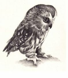Owl drawing by ~KatePowellArt on deviantART. Would love this as a tattoo!