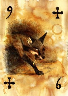 Culpeo Fox. Card