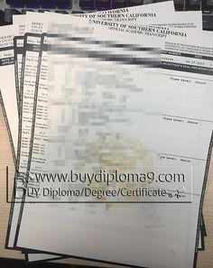 University Of Southern California Transcript Buy College Diploma
