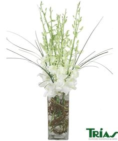 Glamorous Orchids-G-L-A-M-O-R-O-U-S! Glamorous White, Dendrobium orchids adorned with Bear Grass, and Curly Willow, in a modern square vase. #TriasFlowers #MiamiFlowers #SympathyFlowers
