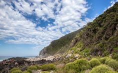 If you have even a passing interest in hiking, make sure you do the Otter Trail along South Africa's Tsitsikamma coastline. Otters, Hiking Trails, Weather, Activities, Mountains, Travel, Outdoor, Outdoors, Trips