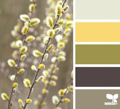 Nature tones color inspiration. Ready to have your home painted by a professional? Contact www.paintpartner.com