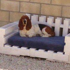 Troca cama gato ou cao de palete - trocar Casa e Jardim usados