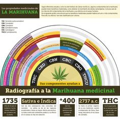 Mas detalle en: http://www.demarihuana.es/los-compuestos-medicinales-del-cannabis/