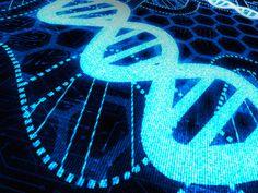 science information technology | iStock_000019035429Medium