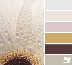 LAB Maison: Inspired by Design Seeds®: Color Dew - porch Design Seeds, Colour Schemes, Color Combos, Color Patterns, Colour Palettes, Hue Color, Color Palate, World Of Color, Color Of Life