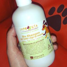 Shampoo, Personal Care, Bottle, Beauty, Lavender, Self Care, Personal Hygiene, Flask, Beauty Illustration