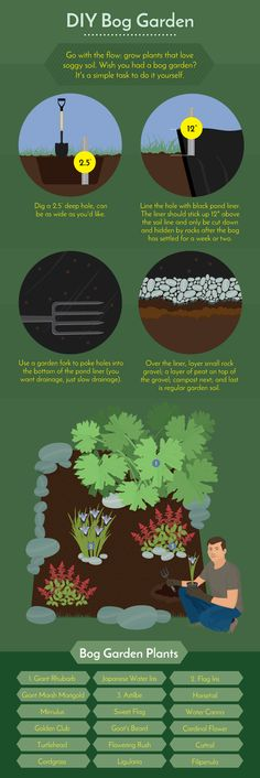 DIY Bog Gardens - Working With Challenging Garden Styles