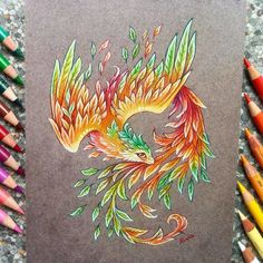 Phoenix of autumn Finally, September . - Phoenix of autumn 🍂🍃 Finally, September has … – - Cute Animal Drawings, Pencil Art Drawings, Kawaii Drawings, Art Sketches, Fantasy Drawings, Fantasy Art, Cute Dragon Drawing, Dragon Drawings, Mythical Creatures Art