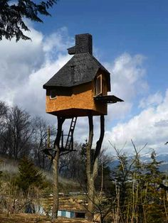 I wish I had a tree house like these