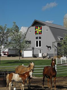 Barn Quilts and the American Quilt Trail: What are you Looking At?
