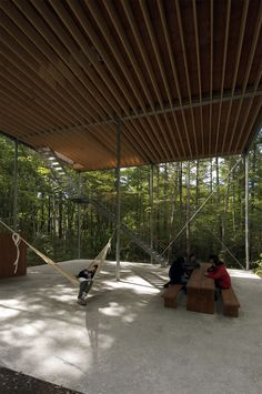 Pilotis in a forest, Go Hasegawa & Associates