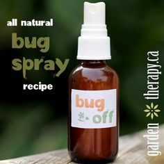 All Natural Bug Spray Recipe  Ingredients    •4 drops citronella essential oil  •4 drops lemongrass essential oil  •4 drops rosemary essential oil  •4 drops eucalyptus essential oil  •4 drops mint essential oil  •1/4 cup pure witch hazel  Directions  1. Add all ingredients into a small glass or plastic atomizer. Shake.  2. Shake well and apply liberally to yourself.
