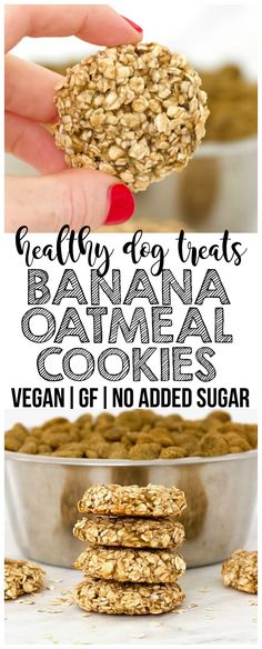 These simple Banana Oatmeal Cookies are the perfect healthy homemade dog treat for your sweet fur babies! They are vegan gluten-free low-fat oil-free and contain no added sugar. Dog Cookie Recipes, Homemade Dog Cookies, Dog Biscuit Recipes, Homemade Dog Food, Baby Food Recipes, Dog Food Recipes, Cookies For Dogs, Vegan Dog Biscuit Recipe, Easy Dog Treat Recipes