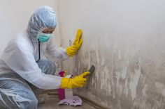 Black Mold Treatment, Work Related Injuries, Toilet Installation, Mold Exposure, Moving And Storage, Coral Springs, Removal Services, Mold And Mildew, Home Improvement Projects
