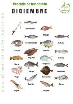 Seasonal fish in November Seafood Recipes, Cooking Recipes, Kitchen World, Food Inc, Seafood Seasoning, Seasonal Food, Food Humor, Fish Dishes, Diy Food