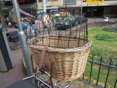 reed bike basket for dog transport