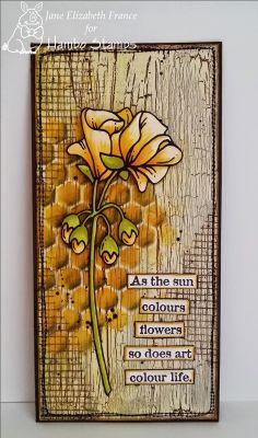 Geranium digi image by Hambo Stamps, card by Jane Elizabeth France