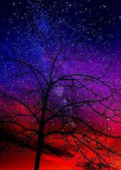Milky Way Galaxy Life Under The Milky Way: Robert Krause Baker Beautiful Sky, Beautiful World, Beautiful Places, Pretty Sky, Galaxy Wallpaper, Milky Way, Night Skies, Sky Night, Night Life