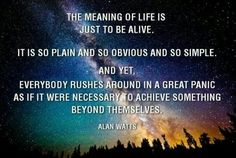 Alan Watts quote | m e s s a g e s | Pinterest