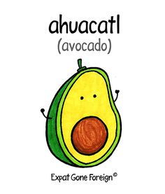 Expat Gone Foreign - Nahuatl Loan Words Spanish Language, The Borrowers, Avocado, Culture, Comics, Words, Lawyer, Cartoons, Comic