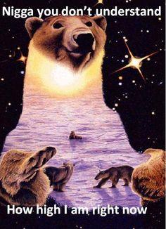 Bear-y high lol