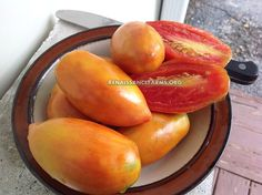 """Des Andes Yellow Tomato  When I first saw a ripened Des Andes Yellow tomato on the vine, the song """"You Light Up My Life"""" by Debbie Boone , came to mind. Ijust could not believe what"""