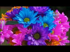 Mensajes,  Poemas,videos: PROMESAS DE DIOS PARA HOY,21 NOVIEMBRE 2015
