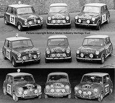 Works Rally Mini's
