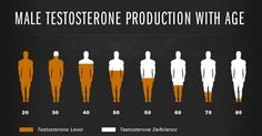 Do you know that one of the major reasons for man boobs is low testosterone level? Checkout vital tips to increase testosterone level & fight man boobs Testosterone Replacement Therapy, Testosterone Therapy, Increase Testosterone Levels, Testosterone Booster, Testosterone Production, Natural Testosterone, Testosterone Deficiency, Growth Hormone, Infographic