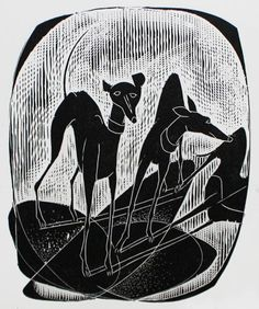 Image result for black and white greyhound print champion