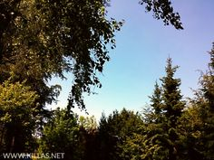 So schaut der #Himmel normalerweise im #Sommer aus.