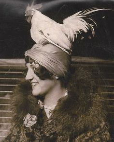 "theshinyboogie: ""Stylish Mae Vavrea tops off her turban with a black-tailed white Japanese bantam rooster at the Chicago Poultry and Pet Show in National Geographic, February 2011 Vintage Photographs, Vintage Images, Old Pictures, Old Photos, Antique Photos, Chicken Hats, Funny Chicken, Chicken Humor, Film Movie"