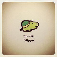 Types of Tortoise for Pets – Find Your Favorite Sweet Turtles, Cute Turtles, Baby Turtles, Cartoon Drawings, Animal Drawings, Cute Drawings, Pet Turtle, Turtle Love, Kawaii Turtle
