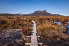 Tasmania - Tasmania - The Overland Track.