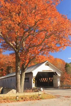 West River Covered Bridge Vermont Fall Foliage Print by John Burk ...