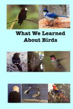 What We Learned About Birds by Jonathan Smith and Others