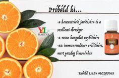 5. Orange + Lime, 1 cseppet teszünk 1,5 liter vízbe, és isteni az íze, ráadásul nagyon sok jótékony hatása van.