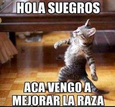 Hola Suegros http://www.grafichistes.com/graficos/hola-suegros/ - http://www.GrafiChistes.com - #Chistes #Humor