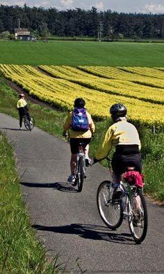 Biking & Hiking- Kettles Trail, Whidbey Island..