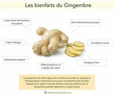 Abc naturopathie les combinaisons alimentaires comment - Comment utiliser le gingembre en cuisine ...